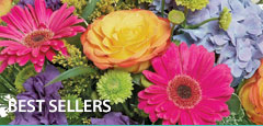 Morningside Florist has the best selling flowers in the area. Click here to view our selection.
