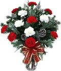 Holiday Carnation Bouquet