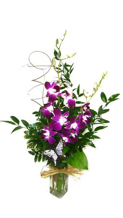 Orchid Budvase*