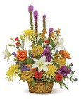 Colorful Embrace Basket