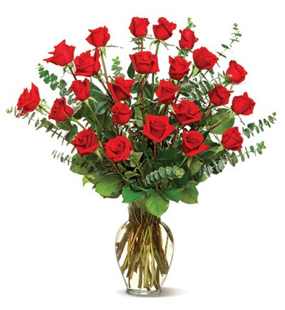 2 Dozen Long Stem Fancy red Roses
